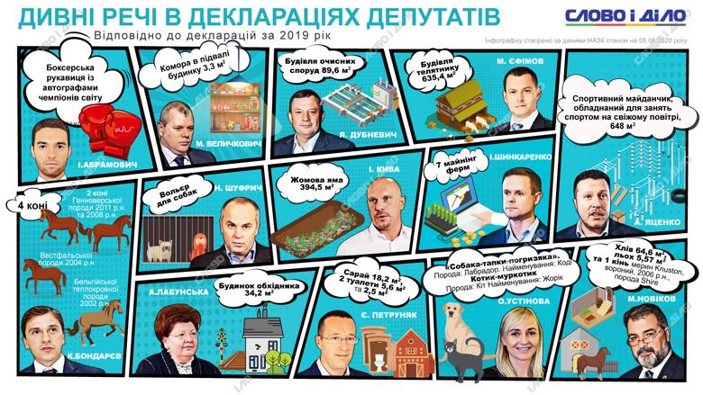 Народний депутат Олександра Устінова задекларувала кота і собаку, а Іван Шікаренко – майнінг-ферми.
