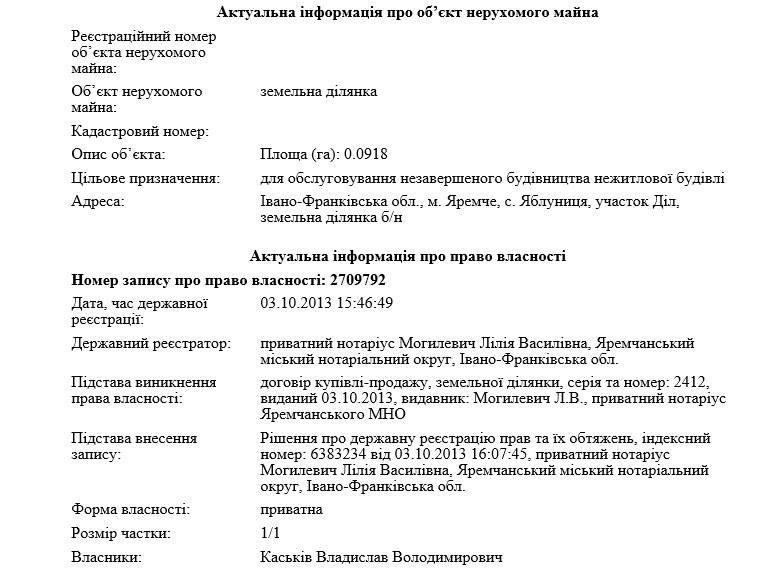 Одіозний екс-чиновник і бізнесмен задекларував квартиру в самому центрі Києва та земельну ділянку за 7 км від Буковеля.