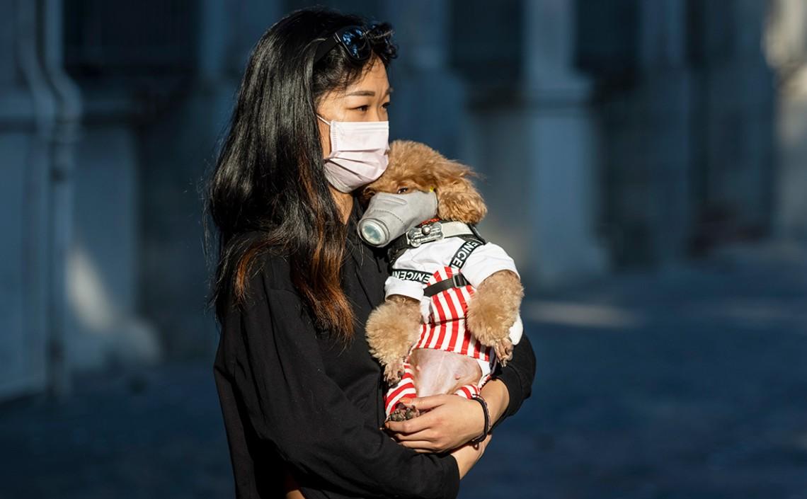 У ВООЗ не виключають, що китайський коронавірус швидкими темпами може дістатися у всі країни світу.