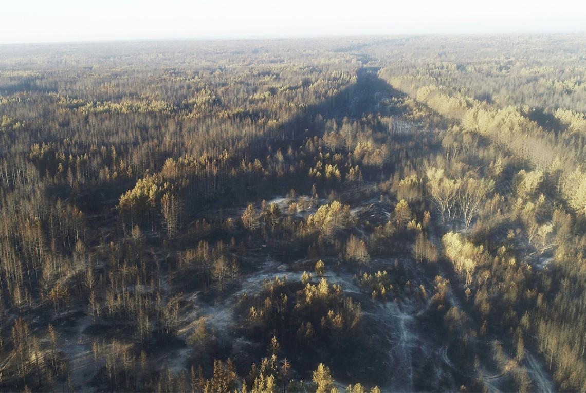 Станом на 11 липня в Луганській області локалізували пожежу. Відкритого вогню немає. Триває тління.