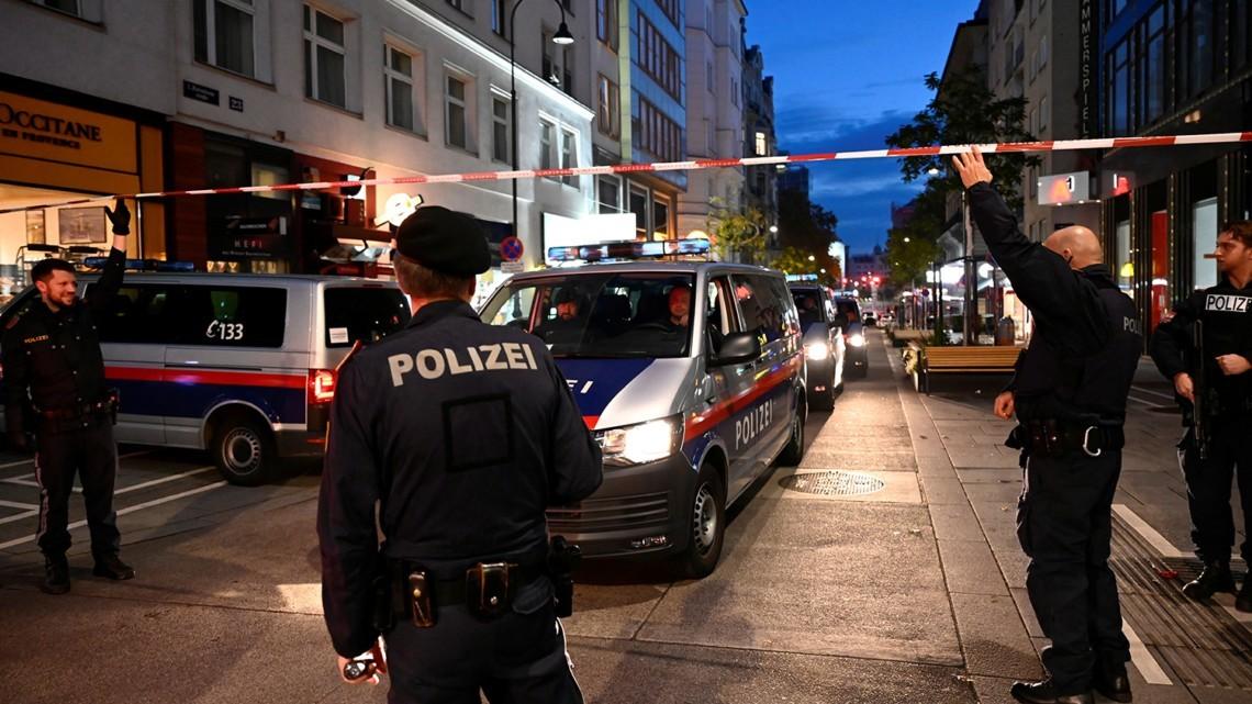 Среди 14 подозреваемых, задержанных по делу о совершении теракта в австрийской столице, есть лица с двойным гражданством, в частности гражданством РФ.