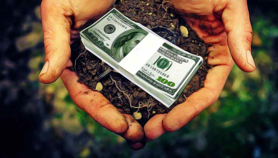Ринок землі в Україні 2021 – велика частина українців проти відкриття  земельного ринку » Слово і Діло