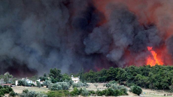 У Туреччині взяли під контроль 125 зі 132 лісових пожеж