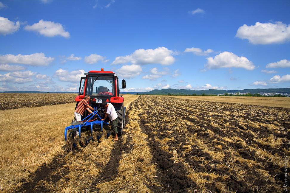 Верховна Рада цього тижня може ухвалити закон про діяльність сімейних фермерських господарств, який відкриє селянам безпосередній доступ на ринок.