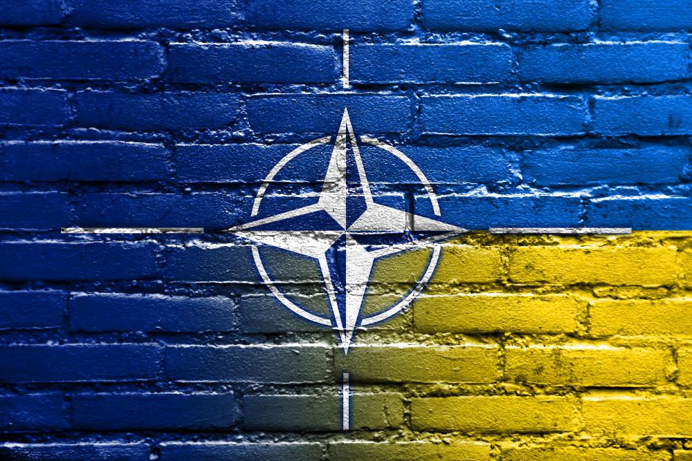 Серед пріоритетів на першому місці стоїть розробка дорожньої карти переходу української оборонної промисловості на стандарти НАТО і поглиблення партнерства з країнами-членами Альянсу.