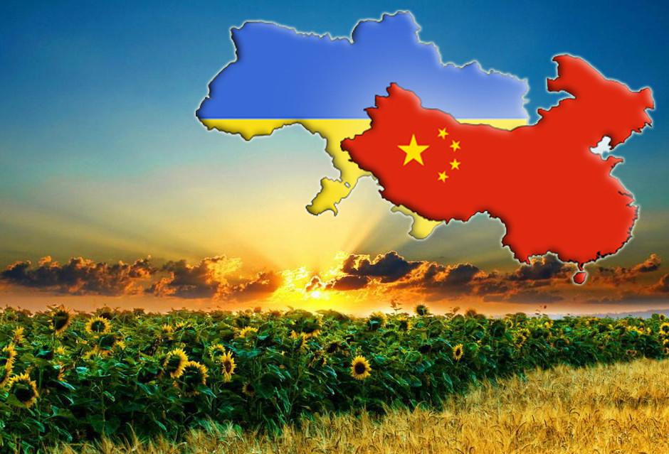 Китай зацікавлений у збільшенні імпорту з України соняшникової шроту, макухи та сорго, а також отримати можливість вирощувати й переробляти продукцію в Україні.