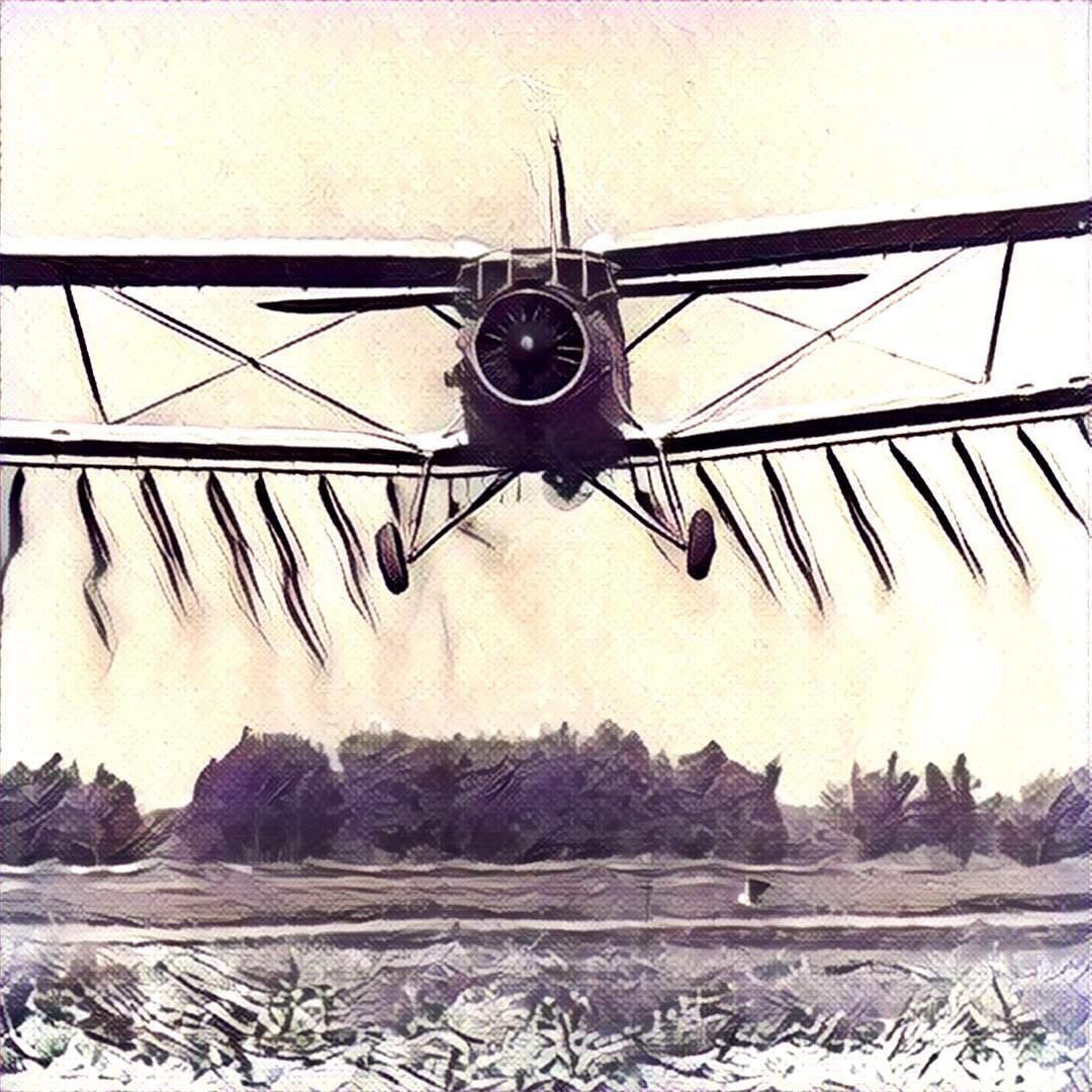 Український Ан-2 занесений до книги рекордів Гіннеса як єдиний літак, який випускається понад 60 років.