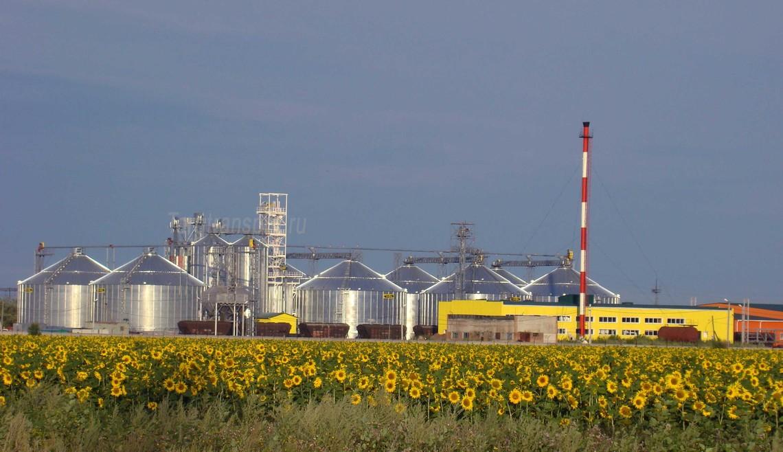 Виробництво олії з соняшнику складе 5,54 млн, а експорт – 4,95 млн тонн завдяки високому врожаю соняшнику в 13,5 млн тонн.