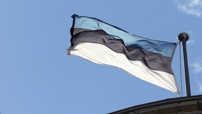 Єдиним кандидатом на президентську посаду в Естонії стала представниця країни в Європейській рахунковій палаті (головний аудиторський інститут ЄС) Керсті Кальюлайд.