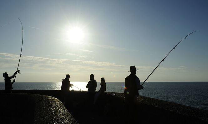 Представники Міжнародної конфедерації спортивного рибальства подали заявку на включення цього виду спорту в офіційну програму літніх Олімпійських ігор 2020 року.