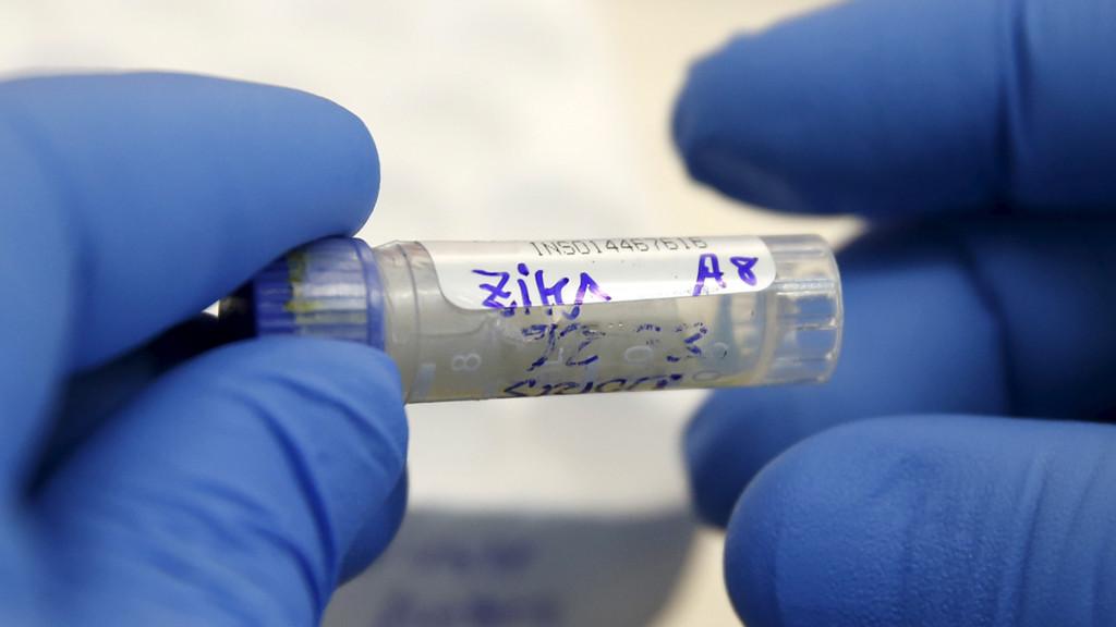 Врачи заявили, что вирус Зика больше несоставляет чрезвычайной угрозы