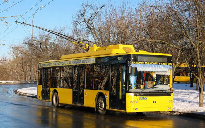 Власти Николаевщины провели обычные Торжественные сборы коДню Соборности Украины