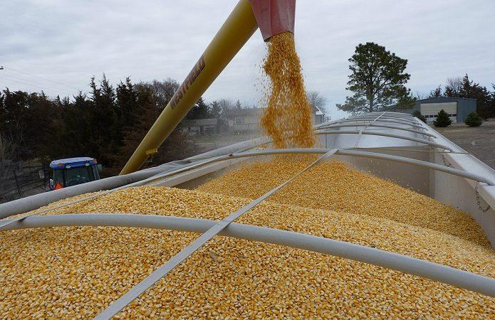 Минсельхоз: Темпы экспорта русского зерна чуть выше прошлогодних