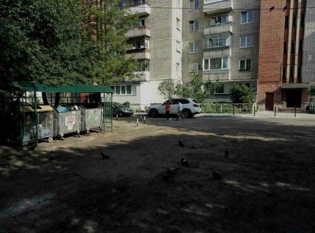По данным Львовской областной госадминистрации, от мусора очистили уже 42% переполненных мусорных площадок Львова.