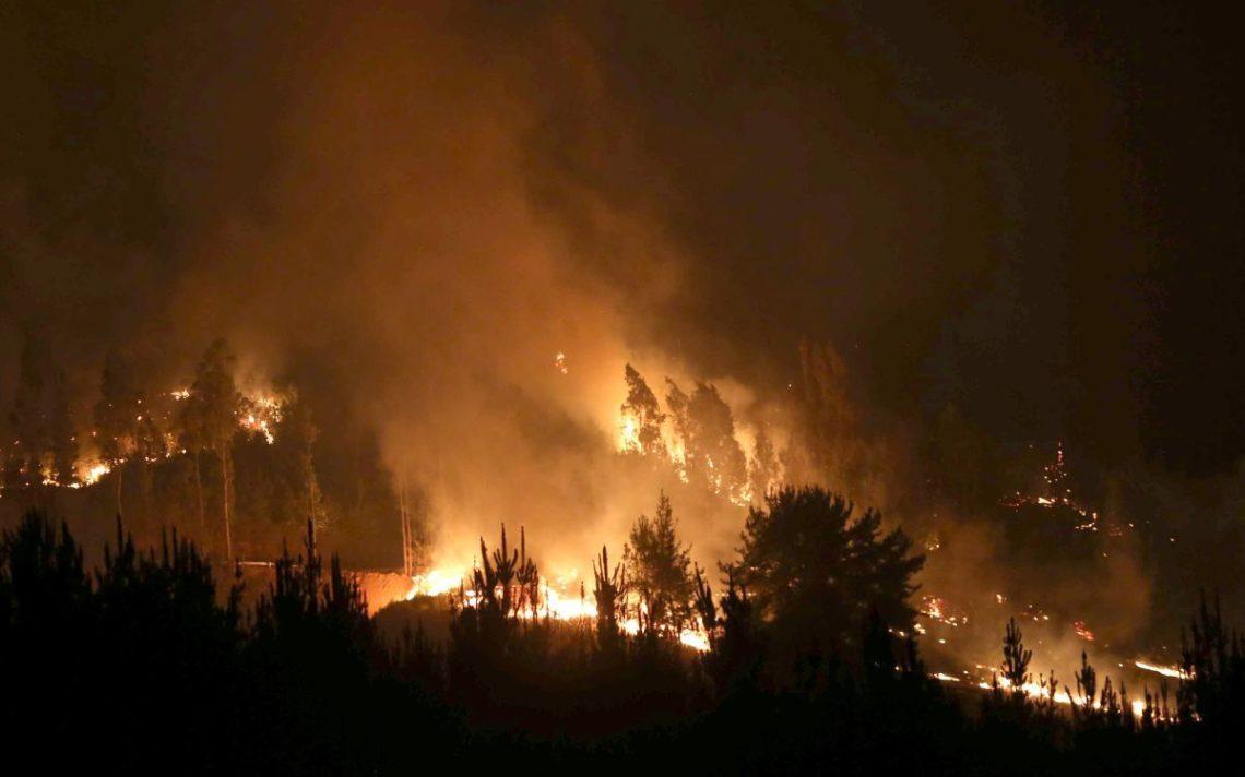 80 человек пострадали при тушении природных пожаров вХорватии