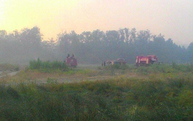 НаХерсонщині гасять лісову пожежу площею 40 га