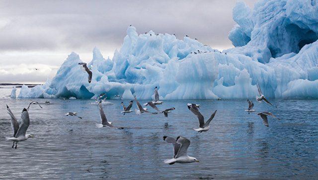 Русские условия половле рыбы вАрктике учтены впроекте контракта