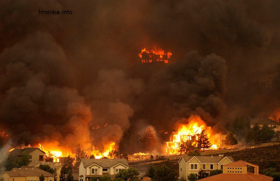 «Видео изада»: ужасающие кадры пожаров вКалифорнии появились вглобальной web-сети