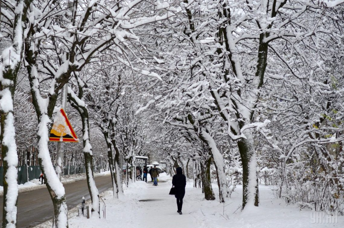 Непогода вгосударстве Украина обесточила больше 80 населённых пунктов