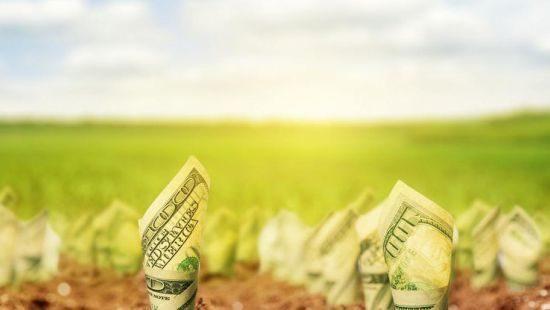 Вартість землі може зрости втричі - Світовий банк