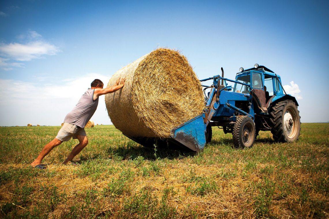 Фермеры должны будут платить ЕСВ— решение Кабмина