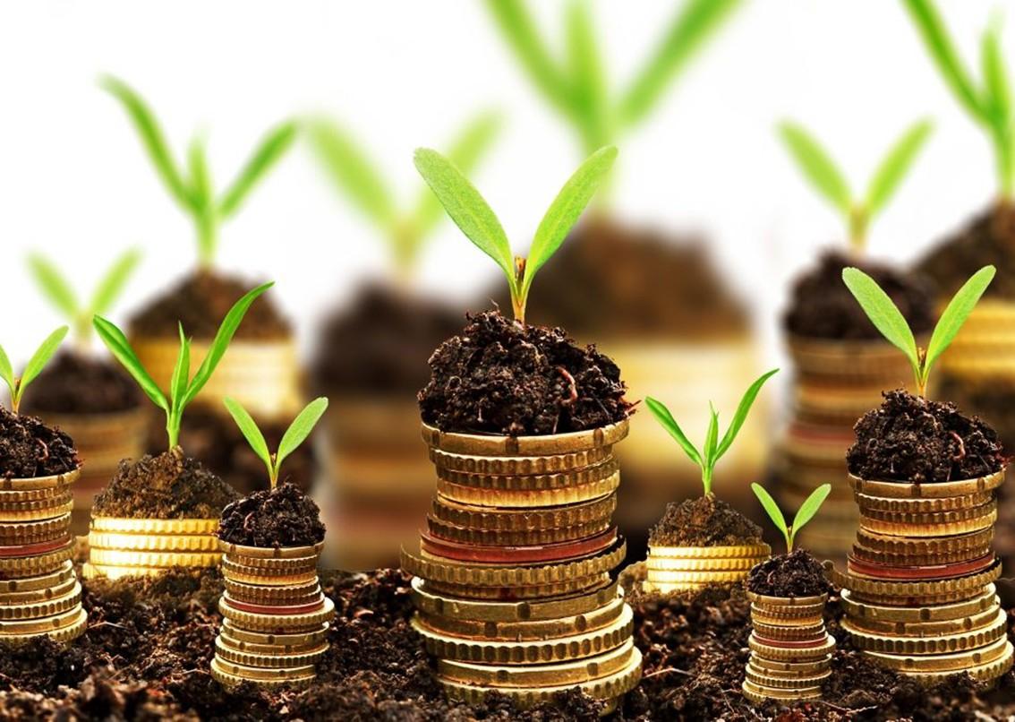 НБУ: доходы бюджета отналогов вэтом году вырастут на11%